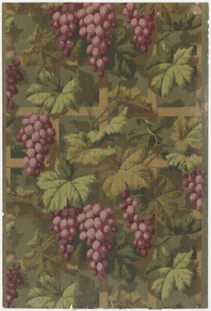Large clusters of purple grapes, with lush foliage, supported on trellis.