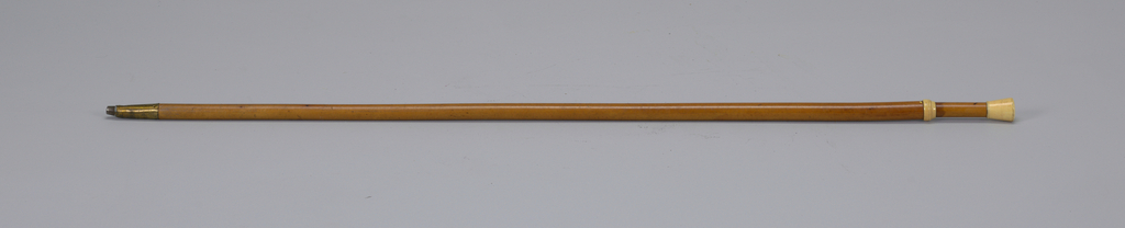 Slightly tapering stick, trimmed with ivory. Brass ferrule and iron tip.