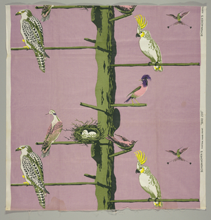 An assortment of birds including a hummingbird, a cockatoo and a hawk on tree with perching rods in six colors.