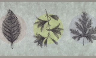 White ground with five pastel-colored circles, each containing a botanical drawing composed of very fine lines in a hatching effect.