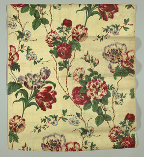 Sample of printed cotton, heavily glazed, showing a large floral design of tulips and roses with curving leafy stems on a white ground. In red, blue, green, violet and brown. Later printing from older blocks with visible block marks.