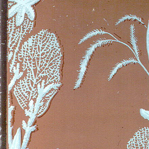 Bathroom paper with green fish and sea horses blowing metallic silver bubbles surrounded by white coral on a terra cotta-colored ground.