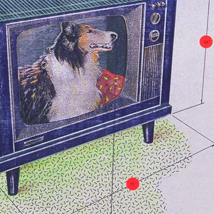 Design for doghouse made of a discarded television set. On the left, text explaining the design; on the right, images relating to the text.