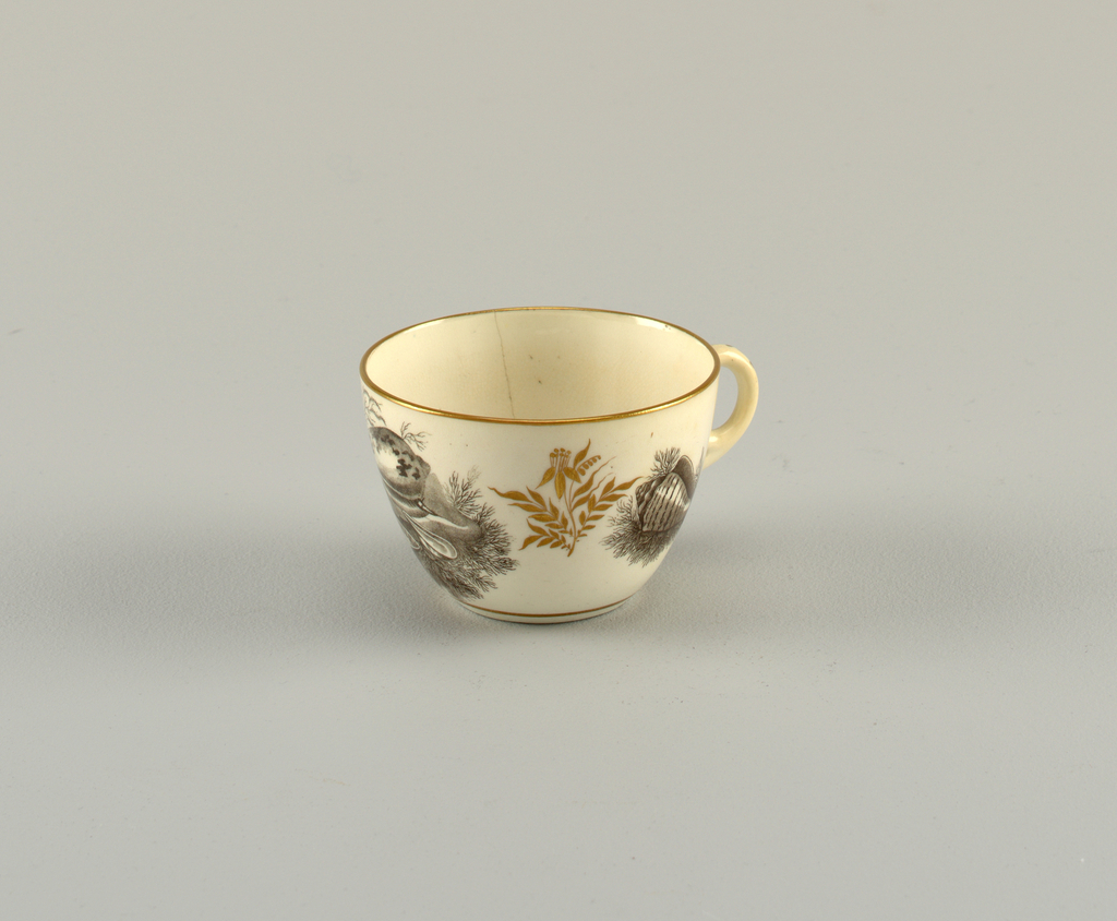 Cup with loop handle. Black transfer print showing sea shells. Floral gilding on body and gilt rim.