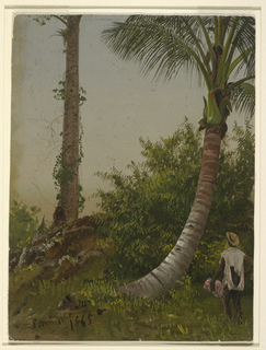 Vertical view of a curved trunk of a palm tree at right with a vertical palm tree at left in the middle distance. A brightly colored figure stands at lower right.