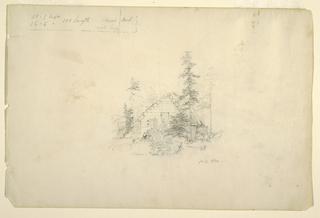 Verso: Trunks of trees
