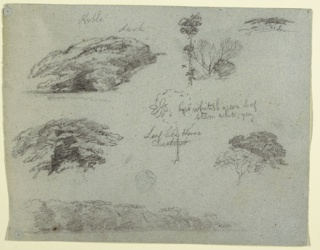 Horizontal view of tree tops at upper left and two designs of trees at upper right; across center are tree tops at left, a tree at center, and tree tops at right; and across the bottom margin is a wooded bank.