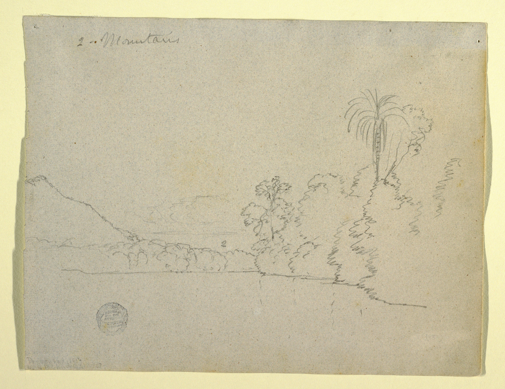 Horizontal view of a mountainous bank of a bay with a slope at left and trees including a palm at right.