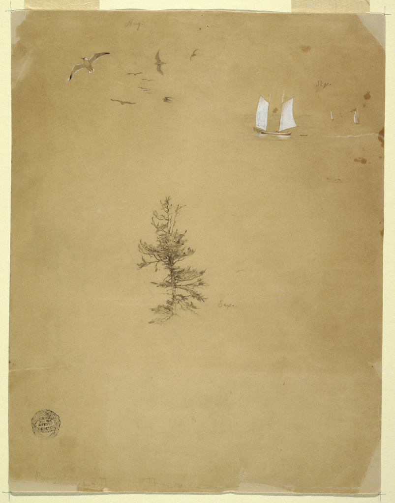 Drawing, Gulls, Sail boats, Tree, August and September 1859