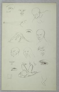 Drawing, Anatomical Studies, 1865–70