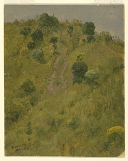Vertical image of a bird's eye view of a rising hillside with grass, bushes, and trees.