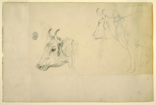 Drawing, Cattle, September 1844