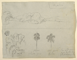 Horizontal view with a landscape at top, a group of trees at the bottom left, and two palms at center right.