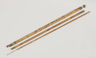 Cane With Fishing Rod