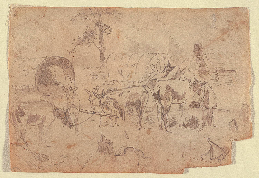 Recto: Horizontal view of a resting wagon train, with tethered mules;  tree and log cabin visible in background.  