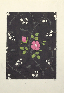 Two pink wild roses, green leaves, on grey vines, surrounded by small white flowers on slate-black ground.