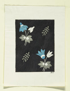 Two groups of blue and white flowers, two grey ferns on black background.