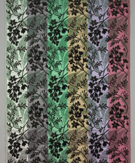 Sample showing six different colorways in vertical stripes. Satin ground has an allover large scale design of long, pointed leaves patterned with ovals. Over the ground is black cut velvet design of sprigs of fresia-like flowers. Pile warp cut away in pile in voided areas.