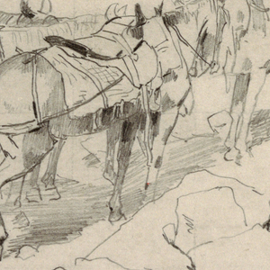 View of four horses with side saddles, one with a regular saddle.