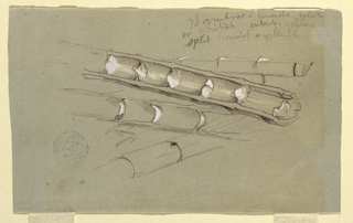 Drawing, Study of Bamboo, June 1857