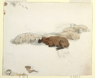 Horizontal view of a group of resting sheep, partially filled in with colors, and a detail of a sheep's hind leg and tail.  Color notations.