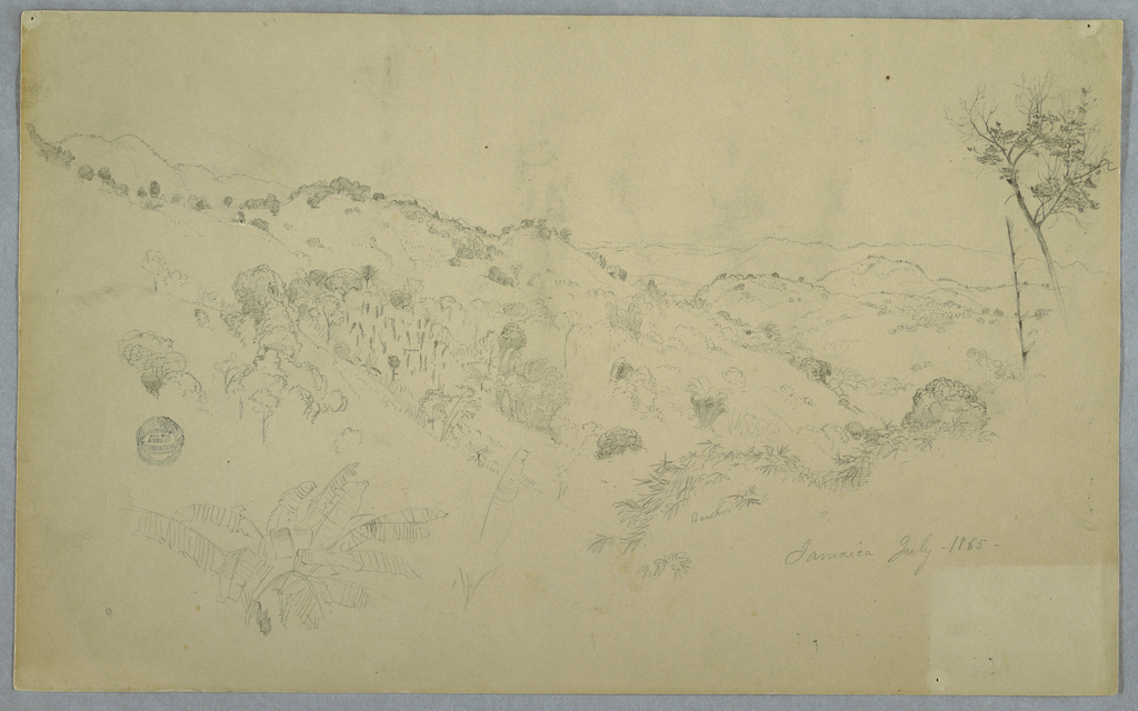 Horizontal view showing a wooded vale obliquely drawn and stretching toward the right, mountain ranges in the distance, and a plant with big leaves at bottom left.