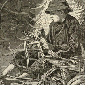 Print, The Last Days of Harvest, from Harper