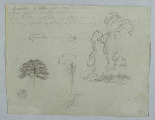 Horizontal view containing an outline of a canoe, at upper left; a group of trees and plants at upper right; a tree top at lower left; and vines hanging from a tree top on the river bank, at lower center.