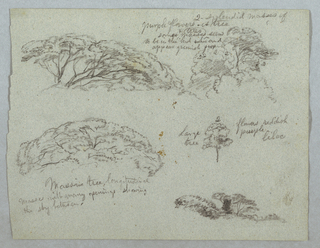 Horizontal sheet containing five designs for tops of trees