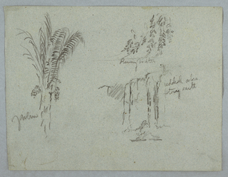 Horizontal view of a palm at left and two designs of hanging boughs at right.