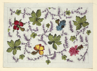 Multi-colored flowers, green leaves on purple feathery vines on white ground.  Lined graphite border.