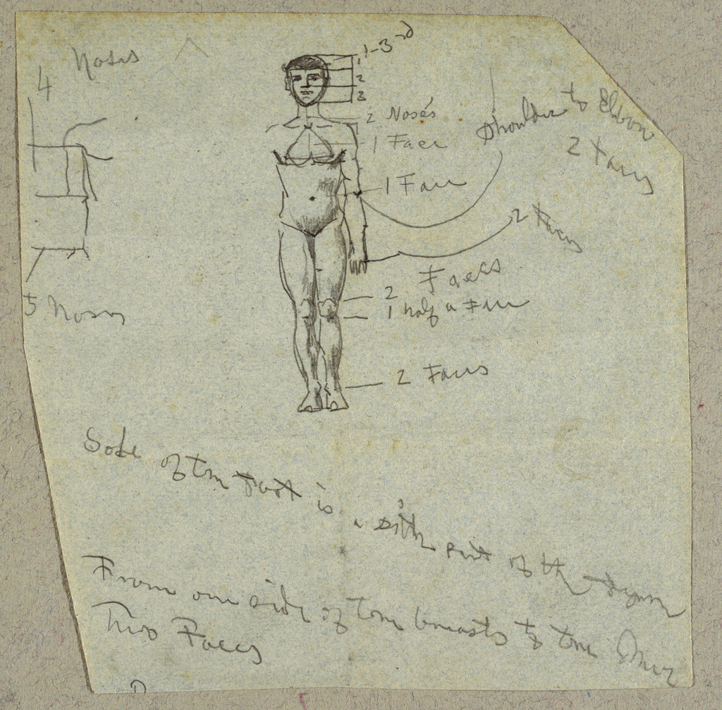 Vertical view of a nude male figure without the right arm, shown de face, with proportions designated in uits of faces and noses.