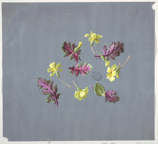Drawing, Design for wallpaper and textiles, flowers, 19th century