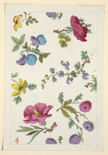 Multi-colored sprigs of flowers, green leaves on white ground, lined graphite border.