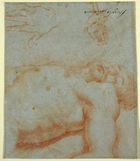 Drawing of the head, upper arm, and torso of dead Christ.  Above the study there are sketches of hands.