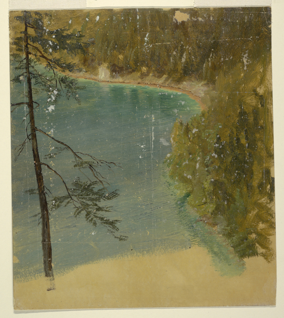 Vertical drawing of  the border of an Alpine lake, possibly  the Koenigsee near Berchtesgaden, Bavaria. A single pine tree stands in the left foreground.