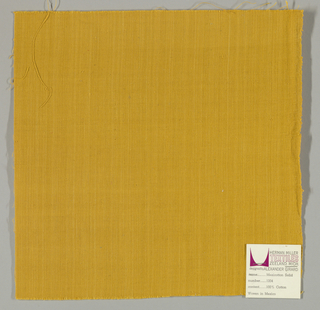 Plain-woven cotton in gold. Slight variation in the color of the warp threads gives a subtle stripe effect.