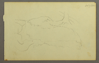 Drawing, Base of a tree, boulders, 1844