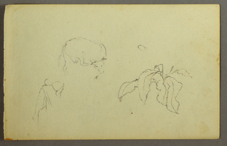 Drawing, Cow scratching her head, leaf plant, possibly 1844