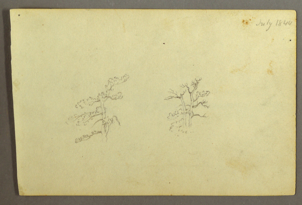 Recto: Horizontal view with a tree at center left, two trees and bushes at right. Verso: Distant view of a lake, shown across hills and against a background of mountains.