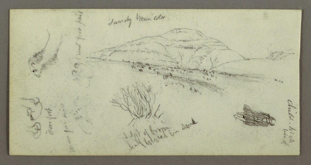 Drawing, Hill, Shrubery, Figure, Camel Studies