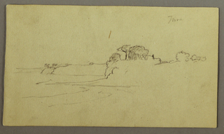 Verso: Plant and Tree Studies, Gallerys (1868/69 ?)