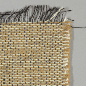 Plain weave with doubled warps in tan and white. Weft threads are black with wide spacing. Number 2.400.