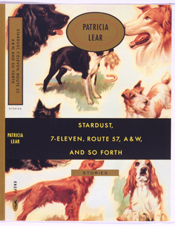 Book Cover, Stardust, 7-Eleven, Route 57, A & W, and So Forth