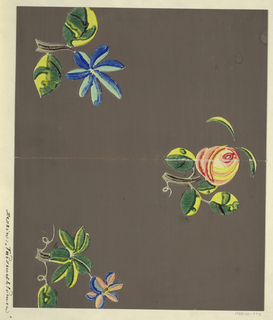 Floral motifs; rose bud and two petalled flowers in blue, pink and yellow on gray ground.