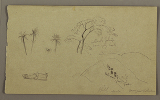 Drawing, Botanical Sketches, figure, May–August 1865