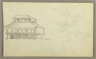 Drawing, House, Botanical sketch, Ecuador or Colombia, 1857