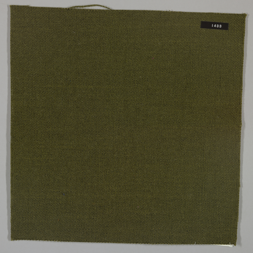Plain weave with olive green warp and weft. Heavy nylon yarns give a coarse surface texture.