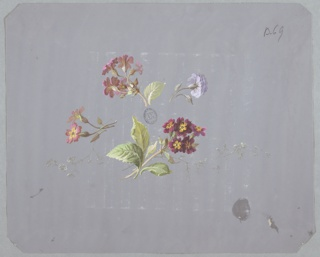 Four clusters of flowers and foliage in various colors and sizes at center of page on gray ground. Clockwise from top: pink cluster of flowers and foliage facing away from viewer and to left, purple flower with foliage facing away from viewer and to right, cluster of maroon and yellow flowers and foliage facing towards viewer and to right, pink and yellow pair of flowers with foliage facing left.