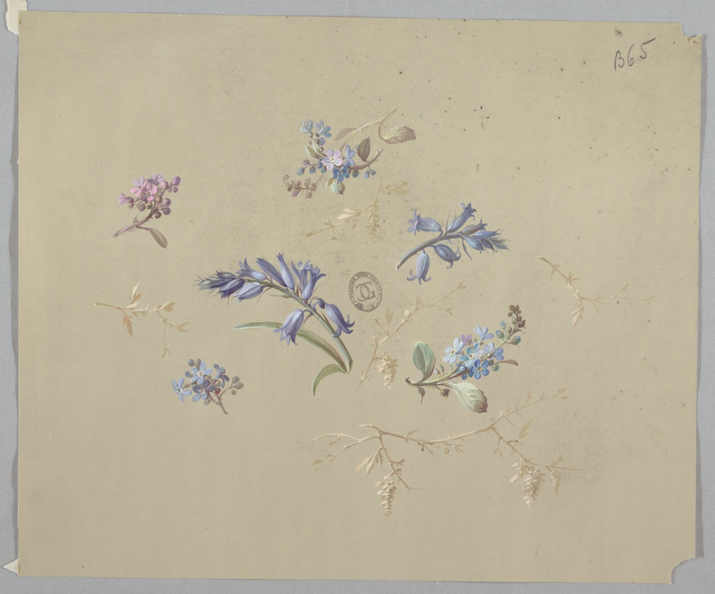Six clusters of blue and purple flowers of different types with stems and foliage scattered at center of page. Also scattered are beige stems of various sizes with foliage of the same color.